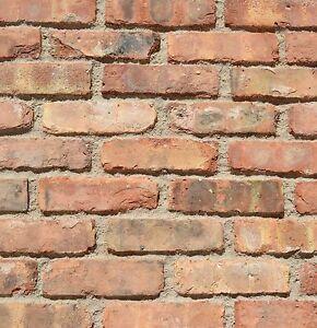 Thin used chicago antique face brick veneer ebay for Brick veneer for interior walls