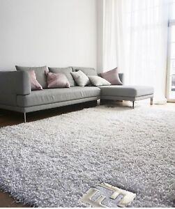 Rolf Benz Couchsofa Ebay