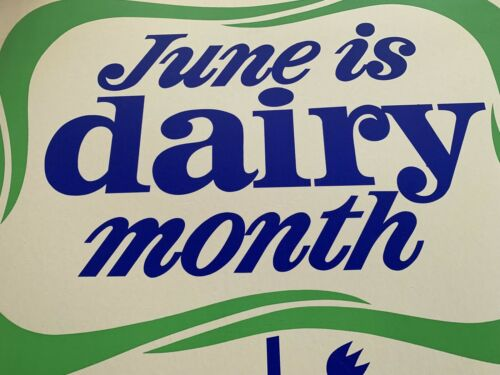 Large Antique Mid Century Dairy Card Stock Lithograph Sign June Dairy Month