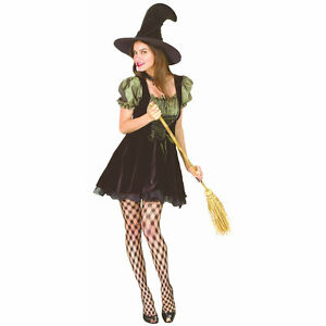 Charming-Witch-Women-039-s-Fancy-Dress-Costume-Gorgeous