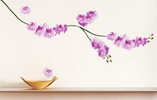 Wandtattoo Wandsticker Homesticker Rosa Orchidee Pink Orchideen
