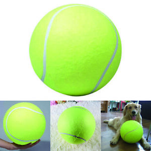 9 5 For Giant Pet Dog Puppy Tennis