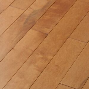 Closeout Solid Canadian Maple Toffee, Closeout Laminate Flooring