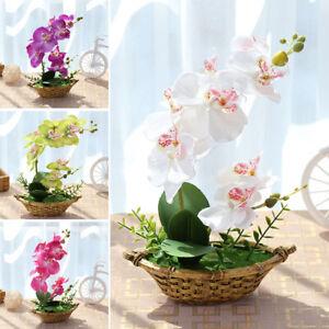 Artificial Simulation Silk Flower Butterfly Orchid Bonsai Fake Plants Pot Decor Ebay