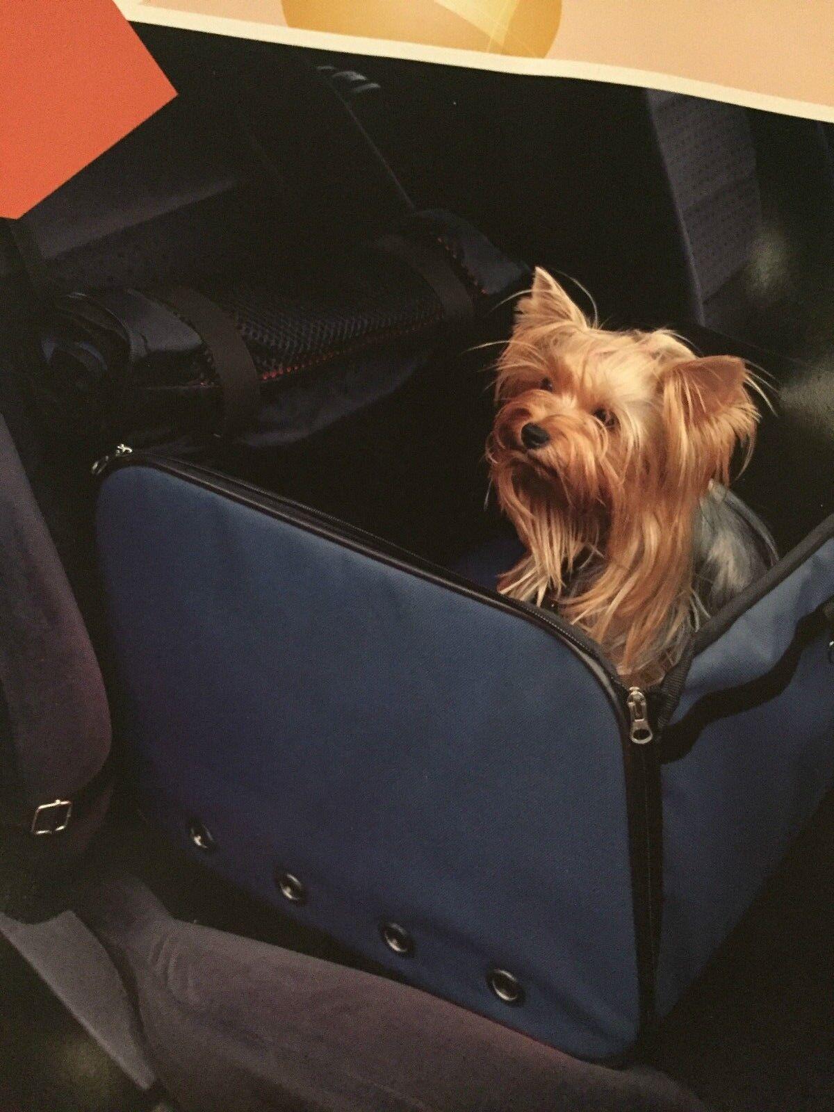 Trasportino per auto per cani misura 39x34x28cm coprisedile auto Pet Drive Box