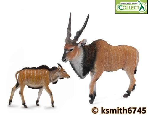 CollectA Eland Antelope & VEAU solide Jouet en plastique Wild Zoo animale africaine nouvelle