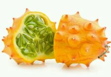 150+ Kiwano/African Horned Melon Seeds Bulk ~ Packed for 2017 *Free US Shipping*