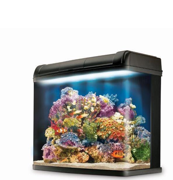 Kent Marine Bio Reef Hood
