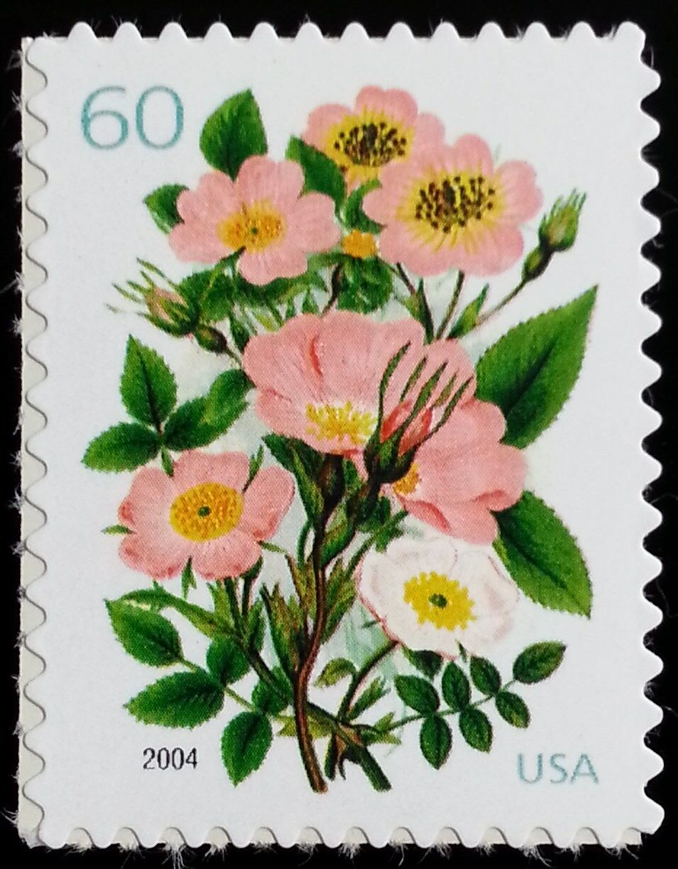 2004 60c Garden Botanical Scott 3837 Mint F/VF NH