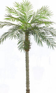 7-039-ARTIFICIAL-PHOENIX-PALM-PLANT-PATIO-TROPICAL-ARECA-TREE-POOL-DATE-SAGO