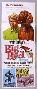 Original Insert Movie Poster: Walt Disney's BIG RED, 1962