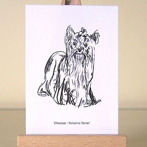 Yorkie-miniature-drawing-Yorkshire-Terrier-ACEO-art-card