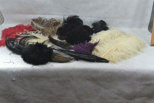 antique plumes feathers ostrich Victorian Edwardia