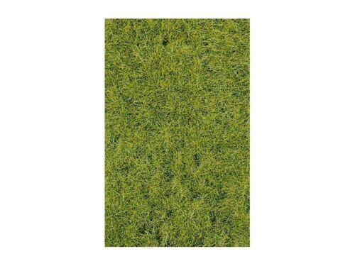 Heki 1856 decovlies Wildgras sols forestiers 40x40 cm