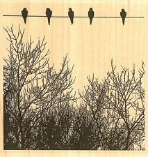 NEW Wood Mounted Rubber Stamp IMPRESSION OBSESSION Birds On A Branch F16147
