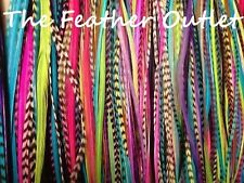 Lot 100 Grizzly Solid Feathers Hair Extensions saddle Colors Bright Real OG