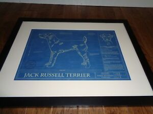 Framed matted jack russell terrier animal blueprint company 20 x 26 image is loading framed matted jack russell terrier animal blueprint company malvernweather Choice Image
