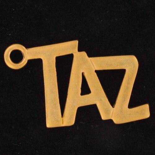 CHARM Taz Tazmanian Devil WARNER BROS LOONEY TUNES WB STORE Gold NAME 5464