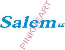 Salem LE Decal  RV sticker decals salem le travel trailer camper rv salem