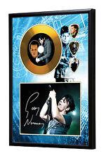 Gary Numan Gold Vinyl Look CD, Autograph & Plectrum Display