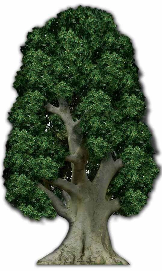 Groß Baum - Riesig Pappfigur Aufsteller Requisite