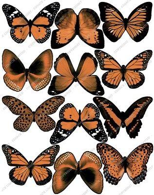 Ingegnoso Cakeshop 12 X Pre-tagliati Arancione Commestibili Farfalla Decorazioni Per Torta-