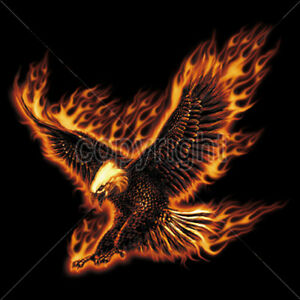 Fire fighter tattoo pinterest - Eagle Flying On Fire Flames Blazing Cool T Shirt Tee Ebay