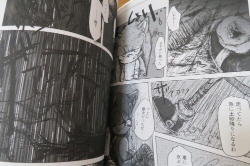 SONIC THE HEDGEHOG Doujinshi SONIC X SHADOW 40pages Kazakiriba AN IMAGE furry