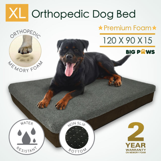Big Paws Thick Extra Large Memory Foam Dog Bed Orthopedic Pet Beds Waterproof