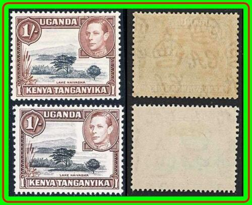 KENYA KUT 1938 KGVI LAKE perf.13x11-1/2 SC#80 MLH CV$36.00 x2 printings