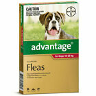 Advantage Red Pack Flea Prevention for Large Dogs - D40105000076