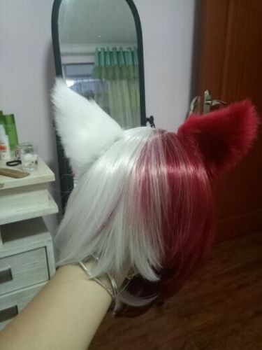Boku no My Hero Academia Todoroki Shoto Shouto Nekomimi Cat Ear Kemonomimi