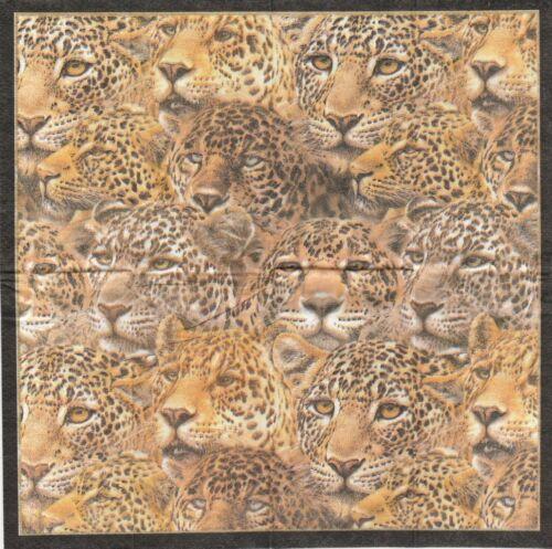 3 Mouchoirs en papier Léopard Decoupage Paper Hankies Leopard