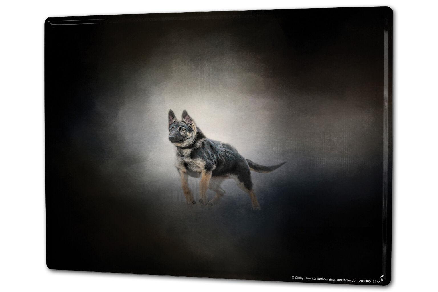 Tin Sign XXL Ravtive Vet Practice German Shepherd