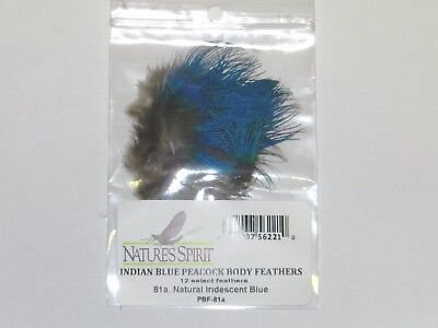 fashioninus2015 10//pack Natural Blue Peacock Neck Feathers Fly Tying Feathers