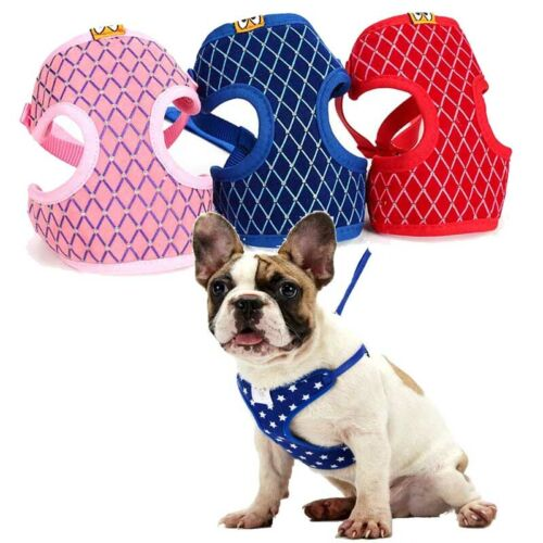 Puppy Mesh Harness/&Leash Set Pet Dog Soft Vest Walk Strap for Small Dogs S L