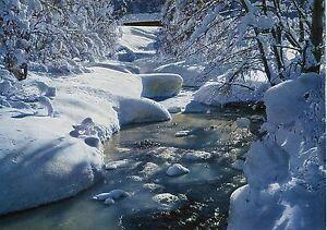 Schweiz Alte Postkarte Eis Und Schnee Am Bergbach