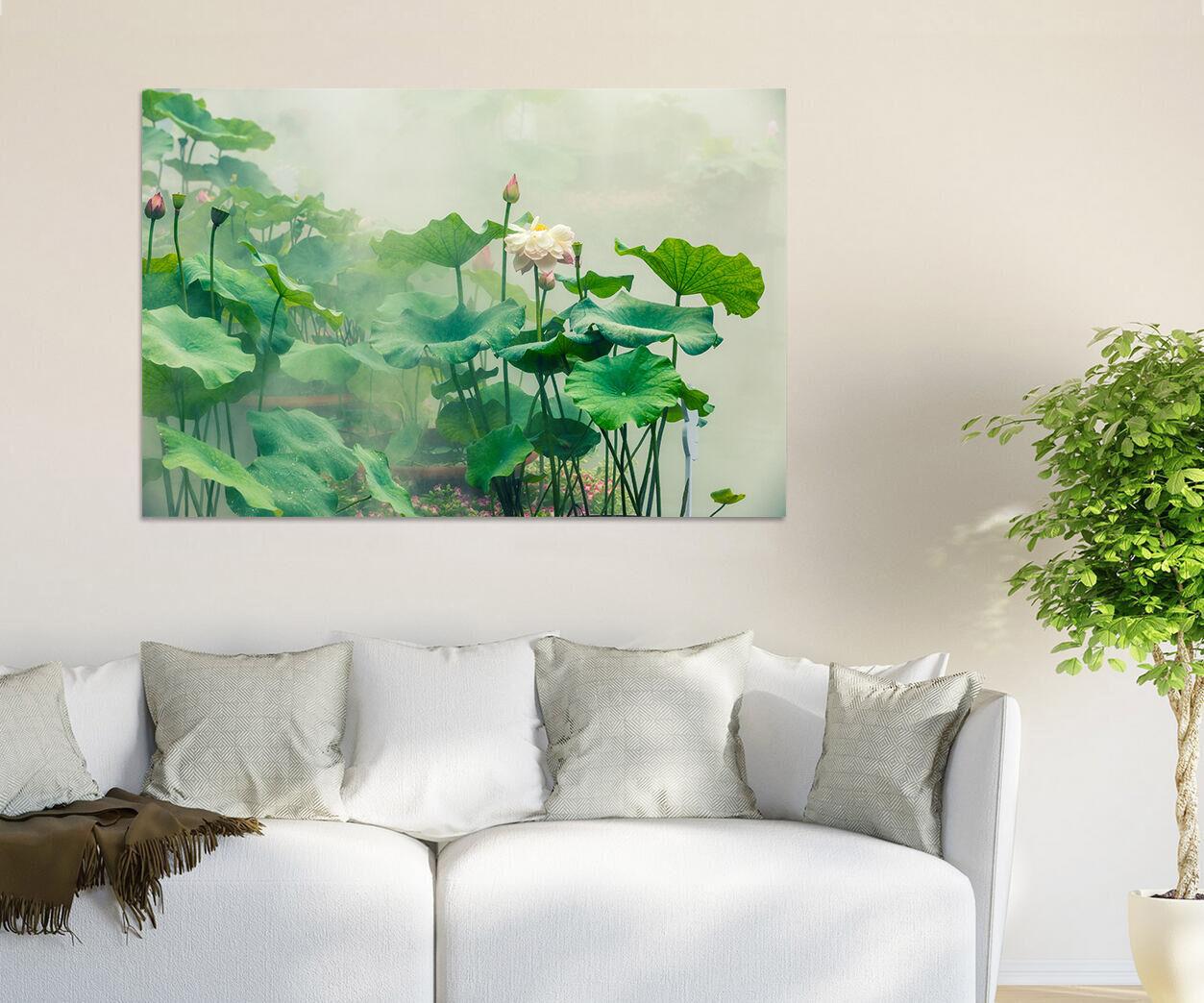 3D Morgen Nebel Lotus Teich 86 Fototapeten Wandbild BildTapete AJSTORE DE Lemon