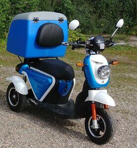 ElektroRoller-ElektroScooter-ElektroMobil-Dreirad-AMEISE-bis-25km-h-Modell-2018