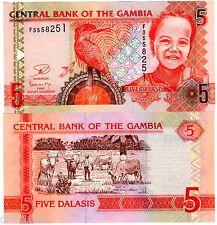 Gambie GAMBIA Billet 5 Dalasis ND 2013 OISEAU NEW NOUVEAU  UNC NEUF