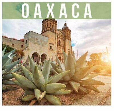 PROYECTO AGRICOLA DEL MAGUEY EN OAXACA