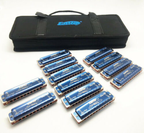 EAST TOP 10hole harmonica set T008K-12 set mouth organ in one case blue covers