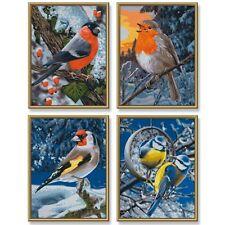 Wintervögel Schipper Malen nach Zahlen 4 x Motive 18 x 24 cm NEU