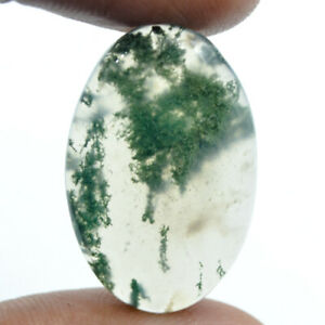 Cts-23-90-Natural-Moss-Agate-Cabochon-Oval-Oval-Loose-Gemstones