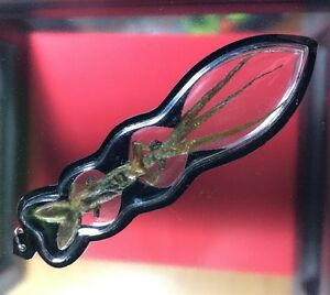 2 Head 3 Tails Mystery Gecko Lizard Thai Amulet Magical Blessing Holy Power
