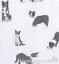 Ladies-BORDER-COLLIE-SHEEPDOG-cotton-mix-Scarf-Sarong-Sheep-dog-lover-gift thumbnail 7