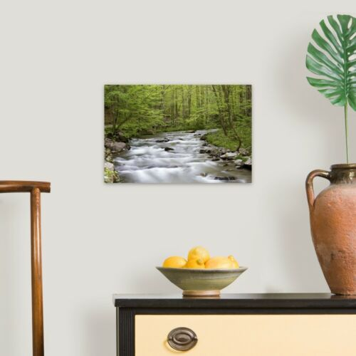 Great Canvas Wall Art Print Straight Fork Creek in spring Home Decor