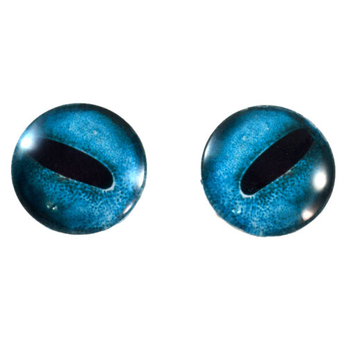 Pair of 30mm Blue Octopus Glass Eyes for Taxidermy Jewelry or Doll Making
