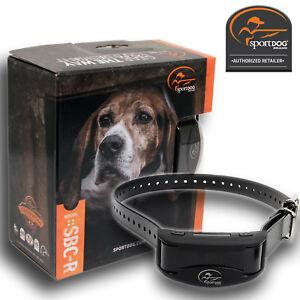 SportDOG-SBC-R-Rechargeable-No-Bark-Collar-Stop-Dog-Barking