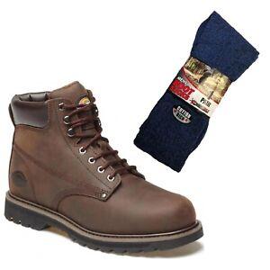 Welton Non Safety Boot